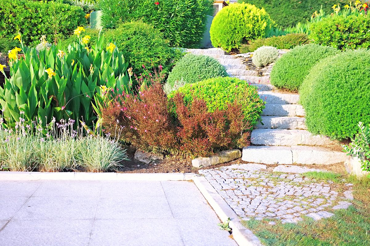 Ferrante Bros. Landscaping